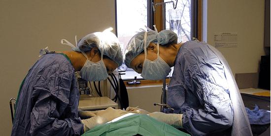 משפרים את היכולות הנדרשות מרופאים לניתוח לפרוסקופי